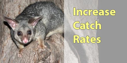 Better Catch Rates